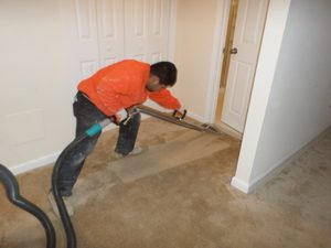 Water-Damage-Restoration-Expert-Cleaning-Carpet-After-Flooding