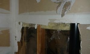 Mold Growth In Drywall Due To Water Damage